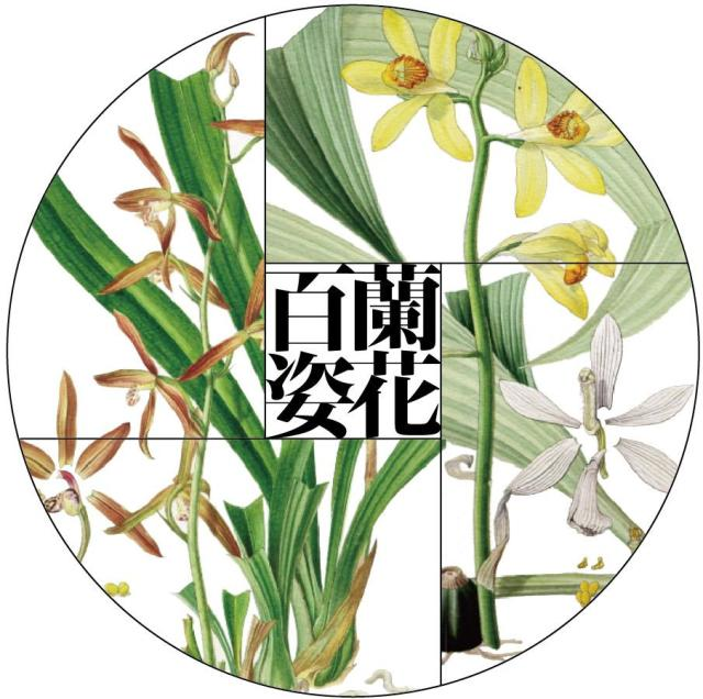 特別展示『蘭花百姿——東京大学植物画コレクションより』